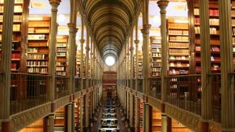 Ausbildung und Wissensgesellschaft